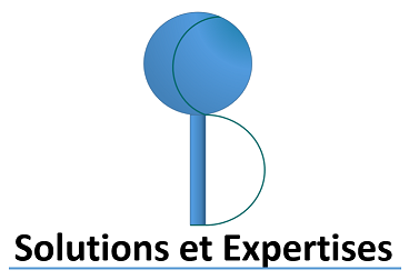 BS Solutions et Expertises Logo